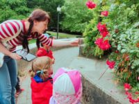 ボランティアを通して実際に日本の保育園で取り入れたい事や関わり方も学べた